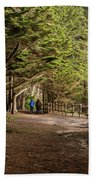 Walk Among The Trees Beach Towel