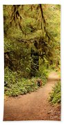 Walk Into The Forest Beach Towel