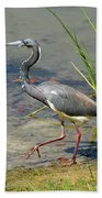 Walking On The Edge Beach Towel