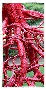 Walking Roots Sculpture Beach Towel