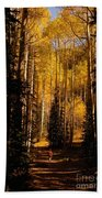 Walking With Aspens Beach Towel