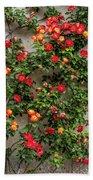 Wall Of Roses Beach Towel