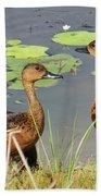 Wandering Whistling Ducks Beach Towel