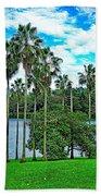 Waokele Pond Palms And Sky Beach Towel