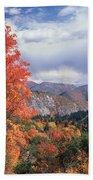 212m45-wasatch Mountains In Autumn  Beach Towel