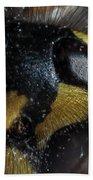 Wasp Eye Beach Towel
