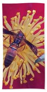 Wasp On Indian Hawthorn Beach Towel