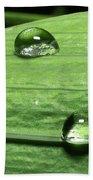 Water Droplet On A Leaf Beach Towel
