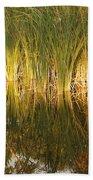 Water Grass In Sunset Beach Sheet