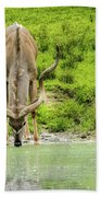 Water Hole Beach Towel