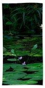 Water Lilies In The Pond Beach Towel