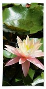 Water Lilly With Dragonfly Beach Towel