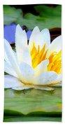 Water Lily - Digital Painting Beach Towel