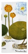 Water Lily, 1613 Beach Towel