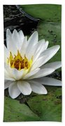 Water Lily 2 Beach Towel