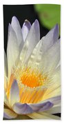 water lily 48 Green Smoke Beach Towel