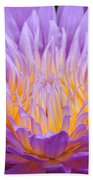 water lily 55 Ultraviolet Beach Towel