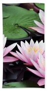 water lily 91 Sunny Pink Water Lily Beach Towel