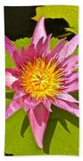 Water Lily After Rain 3 Beach Towel