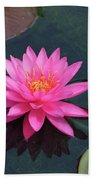 Water Lily - Afternoon Delight Beach Towel