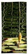 Water Lily Budd Beach Towel