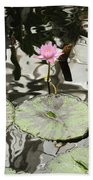 Water Lily Canvas Beach Towel