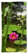 Water Lily In A Pond Beach Towel
