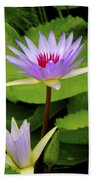 Water Lily In A Tropical Garden_4657 Beach Towel