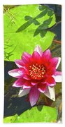 Water Lily In Pond Beach Towel