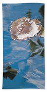 Water Lily Leaves And Reflection Of Clouds In Unknown Lake Beach Towel