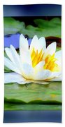 Water Lily With Blue Border - Digital Painting Beach Towel