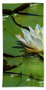 Water Lily With Friend Beach Towel