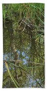 Water Pond Reflection In Peters Canyon Beach Towel
