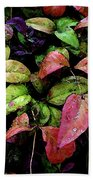 Watercolor Colorful Leaves After A Shower 1771 W_2 Beach Towel