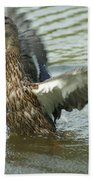 Watercovered Wingflapper Beach Towel