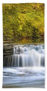 Waterfall Glen, Lemont, Il Beach Towel