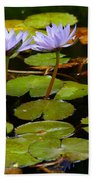 Waterlilies Beach Towel