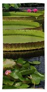 Waterlilies North And South Beach Towel
