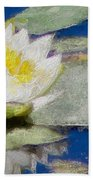 Waterlily Reflections Beach Towel