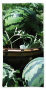 Watermelon In A Vegetable Garden Beach Towel by Lanjee Chee