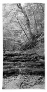 Waterscape In Bw Beach Towel