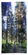 Waterton Valley Trail Detail - Glacier National Park Beach Towel