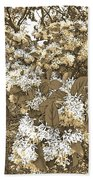Waxleaf Privet Blooms On A Sunny Day In Sepia Tones Beach Towel
