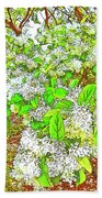 Waxleaf Privet Blooms On A Sunny Day Beach Towel
