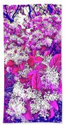 Waxleaf Privet Blooms On A Sunny Day With Magenta Hue Beach Towel
