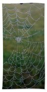 Web After The Storm Beach Towel