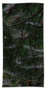 Webs Of A Tree Beach Towel