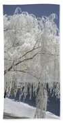 Weeping Willow In Infrared Beach Towel