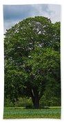 Wenham Ma Farm Tree Tender Crop Farm Beach Towel