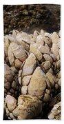 West Coast Barnacles Beach Towel